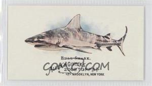 2008 Topps Allen & Ginter's The World's Deadliest Sharks Mini #WDS3 - Bull Shark