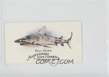 2008 Topps Allen & Ginter's The World's Deadliest Sharks Minis #WDS3 - Bull Shark