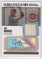 Jay Bruce /489