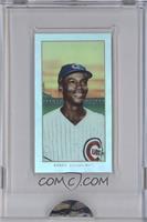 Ernie Banks /749