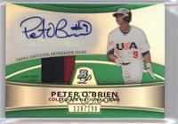 Peter O'Brien /199