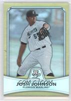 Josh Johnson /539