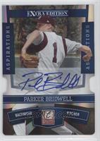 Parker Bridwell /100
