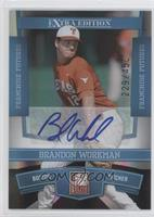 Brandon Workman /450