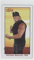 Hulk Hogan /5