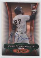 Chris Dominguez /25