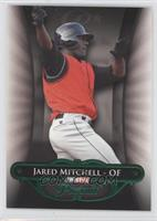 Jared Mitchell /25