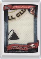 Buster Posey /20