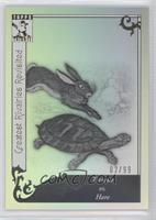 Tortoise vs. Hare /99