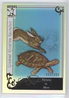 Tortoise vs. Hare /399