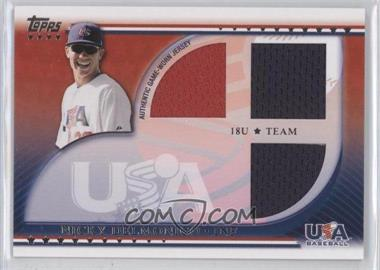 2010 Topps USA Baseball Team Relics #USAR-ND - Nick Delmonico