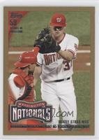 Washington Nationals Team /2010