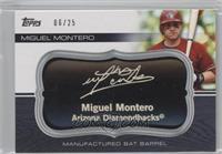 Miguel Montero /25