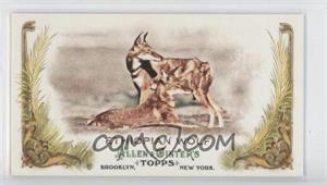 2011 Topps Allen & Ginter's - Animals in Peril Minis #AP10 - Ethiopian Wolf