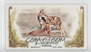 2011 Topps Allen & Ginter's Animals in Peril Minis #AP10 - Ethiopian Wolf