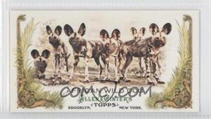 2011 Topps Allen & Ginter's Animals in Peril Minis #AP13 - African Wild Dog