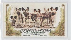2011 Topps Allen & Ginter's Animals in Peril Minis #AP13 - [Missing]