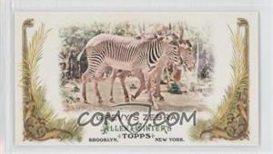 2011 Topps Allen & Ginter's Animals in Peril Minis #AP18 - Grevy's Zebra