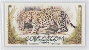 2011 Topps Allen & Ginter's Animals in Peril Minis #AP26 - Amur Leopard