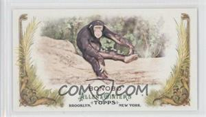 2011 Topps Allen & Ginter's Animals in Peril Minis #AP9 - Bonobo
