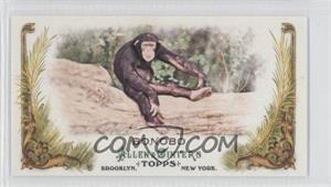 2011 Topps Allen & Ginter's Animals in Peril Minis #AP9 - [Missing]