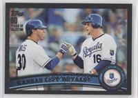 Kansas City Royals (KC Royals) Team /60