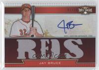Jay Bruce /18