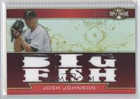 Josh Johnson /36