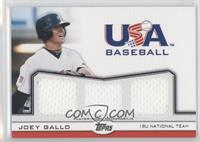 Joey Gallo /240