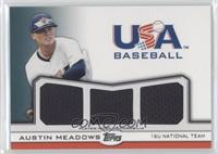 Austin Meadows /240