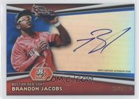 Brandon Jacobs /199
