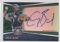 Greg Bird /399