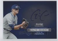 Gavin Cecchini