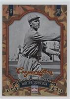 Walter Johnson /299