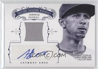 Anthony Gose /49