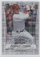 Michael Young /5
