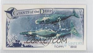 2012 Topps Allen & Ginter's - Giants of the Deep Minis #GD-6 - Bowhead Whale