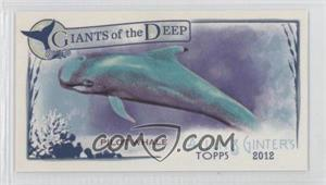 2012 Topps Allen & Ginter's Giants of the Deep Minis #GD-10 - Pilot Whale