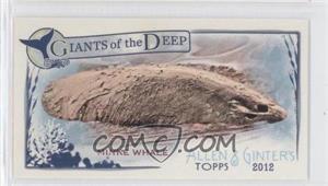2012 Topps Allen & Ginter's Giants of the Deep Minis #GD-12 - Minke Whale