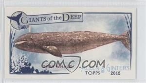2012 Topps Allen & Ginter's Giants of the Deep Minis #GD-13 - Grey Whale