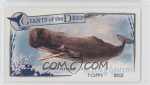 2012 Topps Allen & Ginter's Giants of the Deep Minis #GD-2 - Sperm Whale