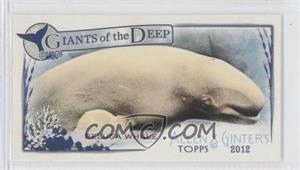 2012 Topps Allen & Ginter's Giants of the Deep Minis #GD-5 - Beluga Whale