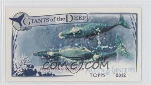 2012 Topps Allen & Ginter's Giants of the Deep Minis #GD-6 - [Missing]