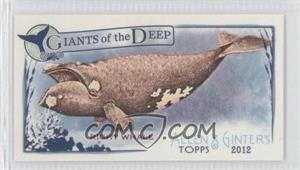 2012 Topps Allen & Ginter's Giants of the Deep Minis #GD-7 - [Missing]