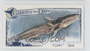2012 Topps Allen & Ginter's Giants of the Deep Minis #GD-8 - Fin Whale
