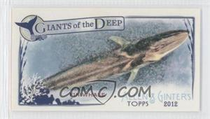2012 Topps Allen & Ginter's Giants of the Deep Minis #GD-8 - [Missing]