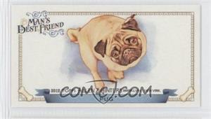 2012 Topps Allen & Ginter's Man's Best Friend Minis #MBF-14 - Pug