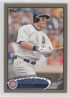 Anthony Rizzo /2012