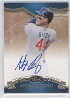 Anthony Rizzo /235
