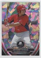 Anthony Rendon /5